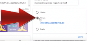 diferencias privado oculto youtube